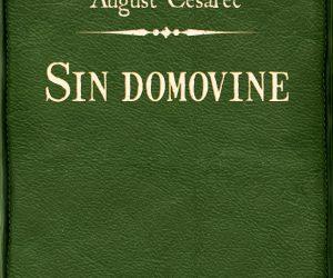 August Cesarec – Sin domovine [pdf] [epub] [mobi]
